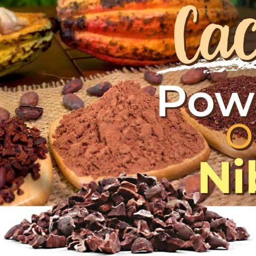 Cacao_Powder_or_Nibs.jpg?v=1543545702